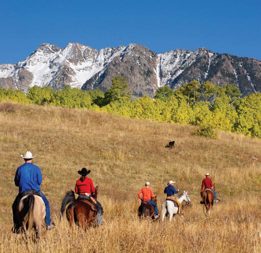 Travel cme Big Sky Summer Horseback