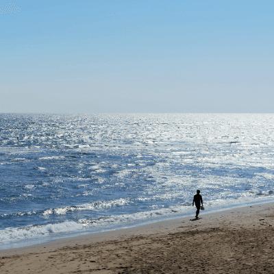 Ocean survival adventure travel
