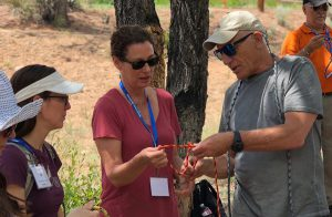wilderness Medicine CME course ropes knots rescue