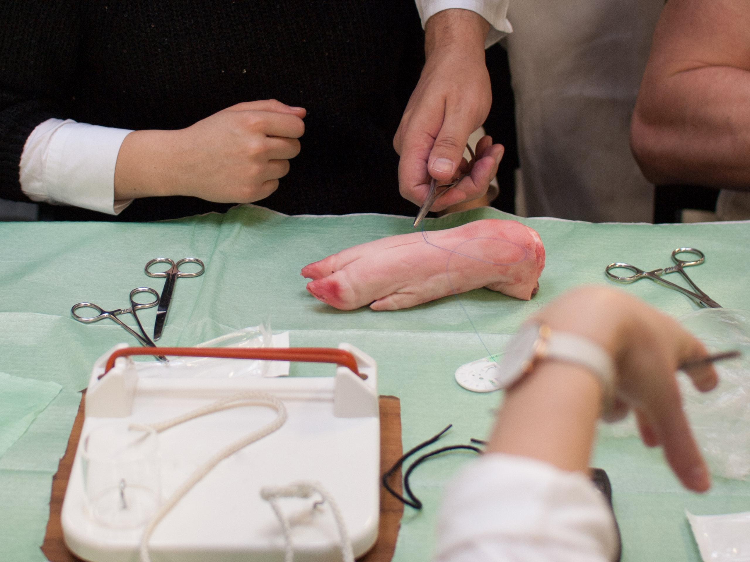 Basic wound workshop