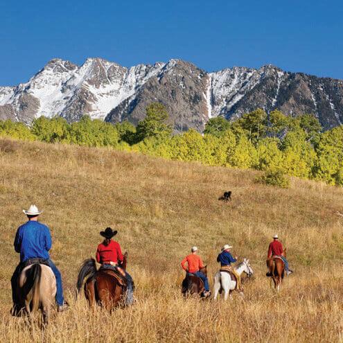 Travel cme Big Sky Summer Horseback